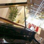 ピアノで奏でる叶えるサプライズ。