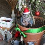 【子供連れに最適】クリスマスプレゼント付きキッズプレート《2016年12月まで限定》